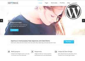 septimus responsive portfoltio wordpress theme